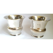 Pair of Super Silver Fern Vases